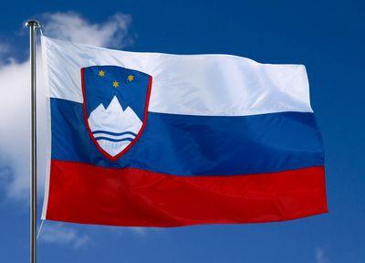 Ponosni na državo in njeno zastavo